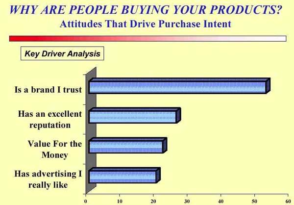 Market Research Reporting  Market Research Data Analysis